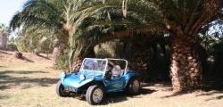 Buggy, Baja